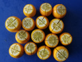 Bearss Limes: trimmed and quartered