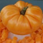 TF-01-amana-orange