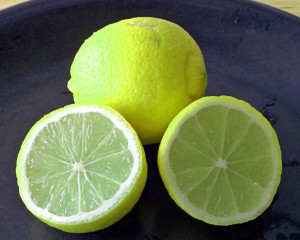 Bearss limes are larger and sweeter