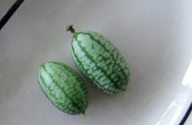 mexican mini-melon