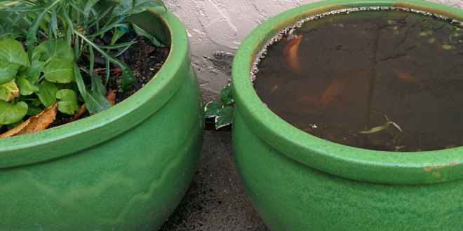 Drainage for Pots