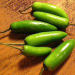 Serrano Chile Pepper