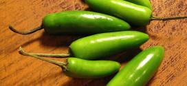 Serrano Chile Pepper