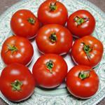 Aurora tomato