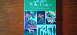 book Edible Wild Plants