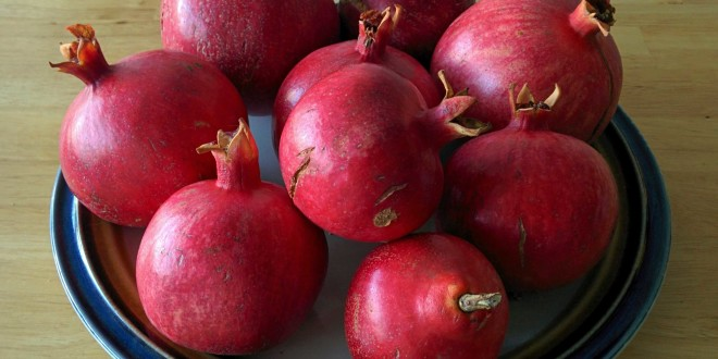 Pomegranate Harvest 2015