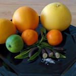citrus-2016