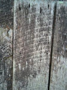 bhm08-saw-marks