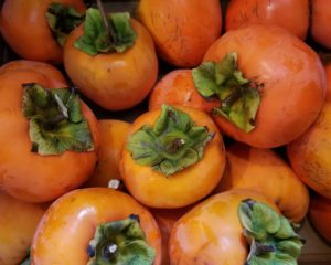 persimmons-fruit