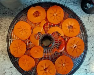 persimmons-tray